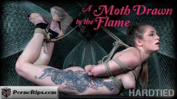 hardtied-19-02-13-cora-moth-a-moth-drawn-to-the-flame.jpg